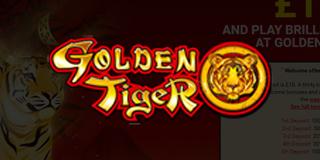 Golden Tiger Casino Bonuses